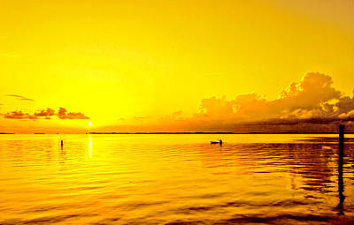 Photograph - Yellow Sky Sunset by Lewis Mann