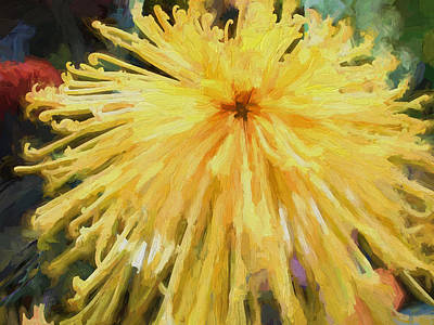 Mums Painting - Yellow Spider Mum Oil Painting by Elaine Plesser