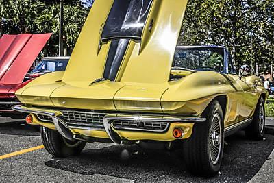Yellow Stingray Original