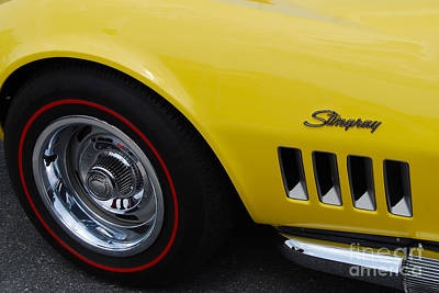 Photograph - Yellow Stingray Closeup by Mark Spearman