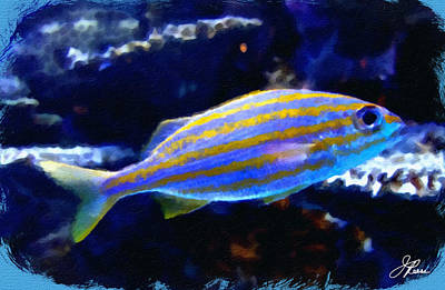 Painting - Yellow Striped Fish by Joan Reese