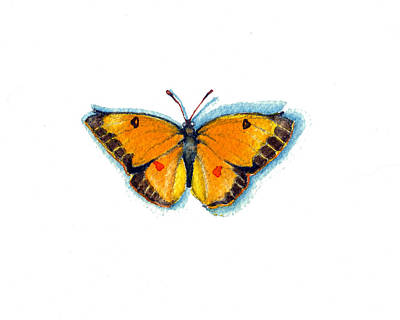 Painting - Yellow Sulphur by Katherine Miller