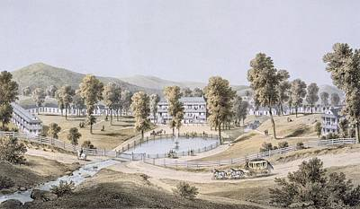 Horse Drawing - Yellow Sulphur Springs, Montgomery by Edward Beyer