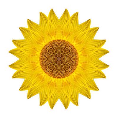 Photograph - Yellow Sunflower Ix Flower Mandala White by David J Bookbinder