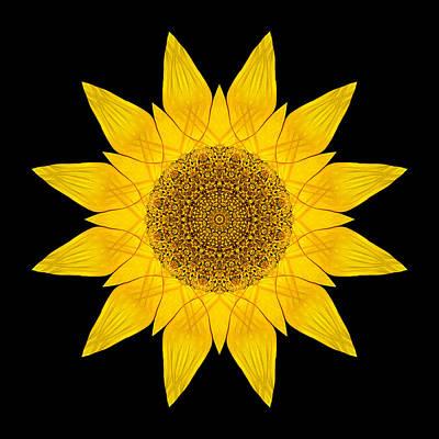 Yellow Sunflower X Flower Mandala Art Print