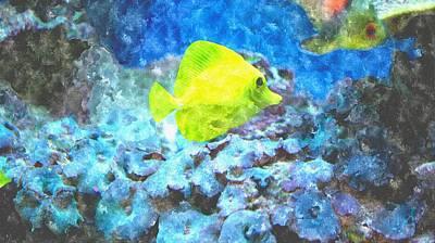 Under The Ocean Drawing - Yellow Tang Of Hawaii by Rosemarie E Seppala