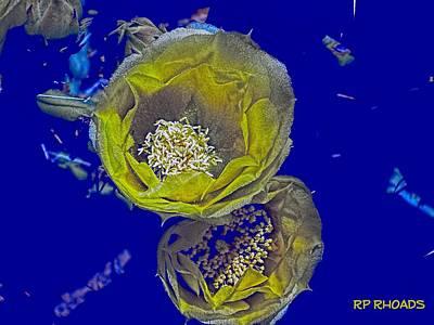 Photograph - Yellow Texas Cacti by Robert Rhoads