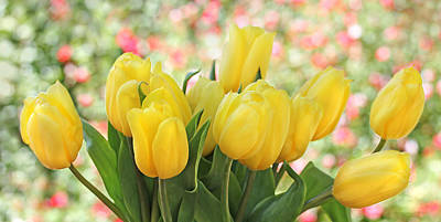 Photograph - Yellow Tulips In The Spring Garden by Jennie Marie Schell