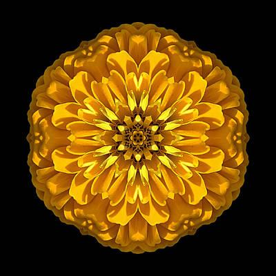 Yellow Zinnia Elegans Flower Mandala Art Print
