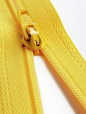Closing Photograph - Yellow Zip by Science Photo Library