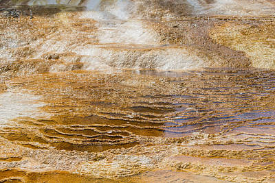 Yellowstone Gold Art Print