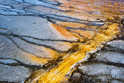 Yellowstone Photograph - Yellowstone Abstract by Delphimages Photo Creations