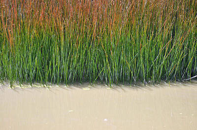 Yellowstone Autumn Grasses Near Hot Pool Art Print by Bruce Gourley