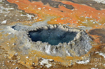 Photograph - Yellowstone Bubbling Pool by Debra Thompson