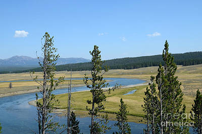 Photograph - Yellowstone Curvy River by Debra Thompson