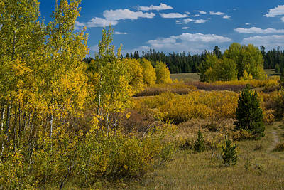 Photograph - Yellowstone In The Fall by Roger Mullenhour