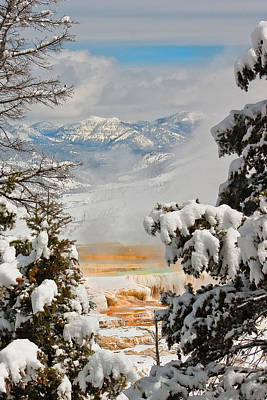 Wall Art - Photograph - Yellowstone In Winter by Diana Marcoux