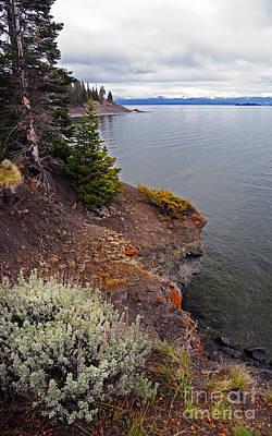 Photograph - Yellowstone Lake by Cindy Murphy -NightVisions