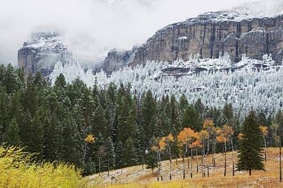 Absaroka Photograph - Yellowstone National Park, Autumn Frost by Ken Archer