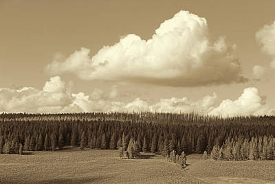 Photograph - Yellowstone National Park Scenic View Sepia by Jennie Marie Schell