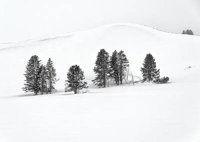 Photograph - Yellowstone National Park Winter Landscape by Alan Toepfer