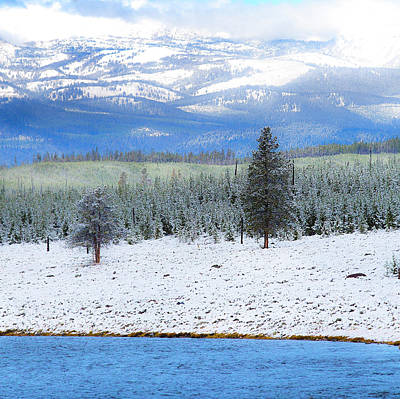 Yellowstone National Park, Wyoming Print by Janet Muir
