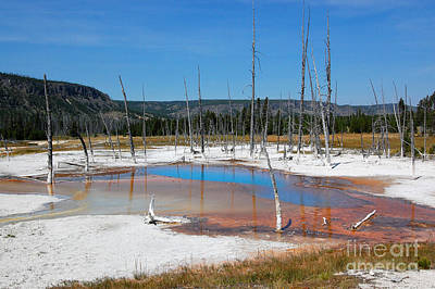 Photograph - Yellowstone Opalescent Pool by Debra Thompson