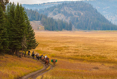 Photograph - Yellowstone Pack Trips by Brenda Jacobs