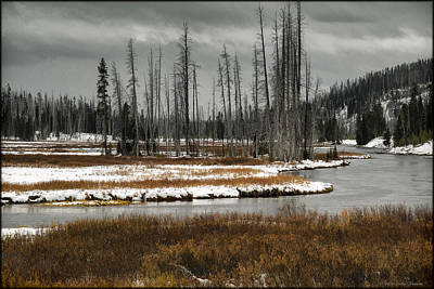 Photograph - Yellowstone River by Erika Fawcett