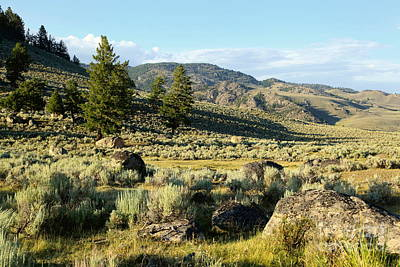 Yellowstone Scenery Art Print by Sophie Vigneault