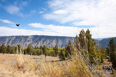 Photograph - Yellowstone View by Cindy Singleton