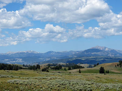 Photograph - Yellowstone View by Laurel Powell