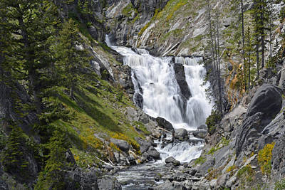 Yellowstone's Mystic Falls With Spring Flowers Art Print by Bruce Gourley