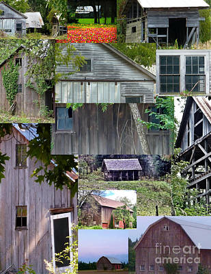 Photograph - Yesterday Barns Collage by Susan Garren