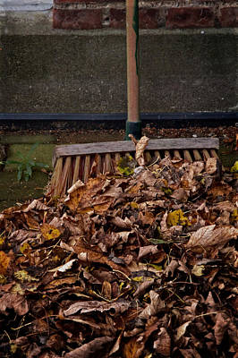 Fallen Leaf Photograph - Yesterday Today And Tomorrow by Odd Jeppesen