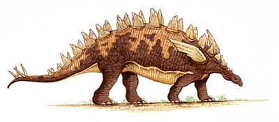 Paleozoology Photograph - Yingshanosaurus Dinosaur by Deagostini/uig