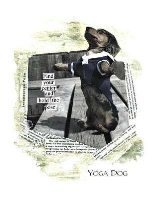 Cute Dog Digital Art - Yoga Dog by Susan Stone