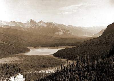 British Columbia Drawing - Yoho Park Reserve by Litz Collection