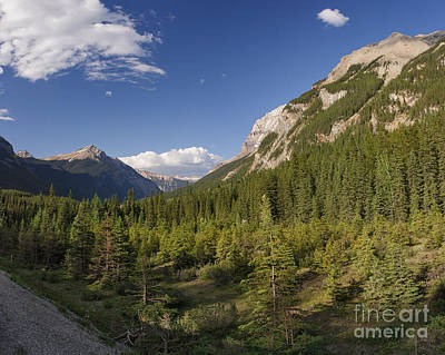 Photograph - Yoho Valley by Charles Kozierok