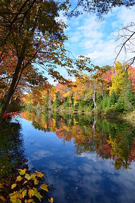 Photograph - York River Bancroft Ontario by Brenda Stone
