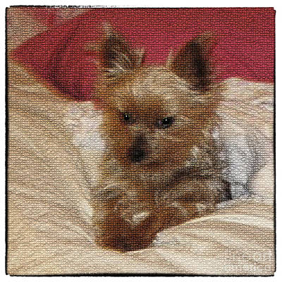 Cute Dog Digital Art - Yorkiehood by Betty LaRue
