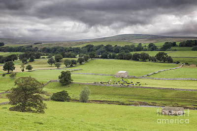 Yorkshire Dales Art Print by Colin and Linda McKie