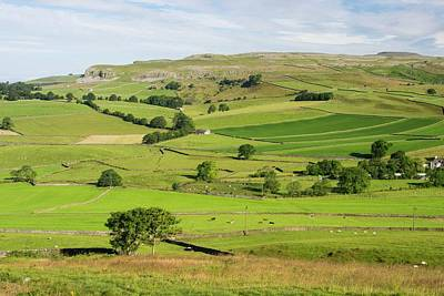 Yorkshire Dales Scenery Art Print by Ashley Cooper