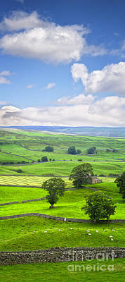 Photograph - Yorkshire Dales Wensleydale England by Colin and Linda McKie