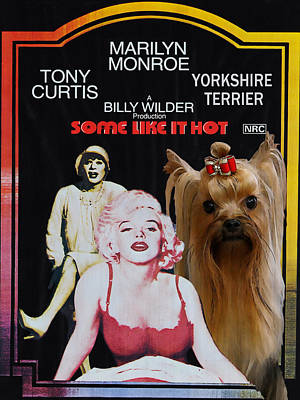 Painting - Yorkshire Terrier Art Canvas Print - Some Like It Hot Movie Poster by Sandra Sij