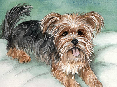 Yorkshire Terrier On Bed Art Print by Cherilynn Wood