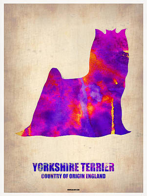 Puppy Digital Art - Yorkshire Terrier Poster by Naxart Studio