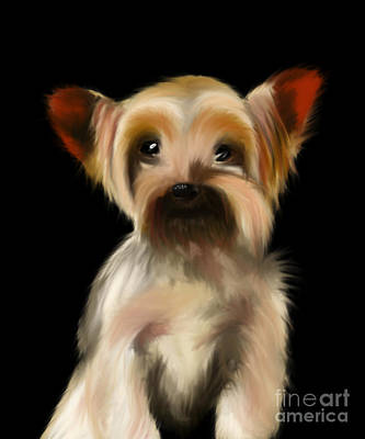 Yorkshire Terrier Pup Art Print