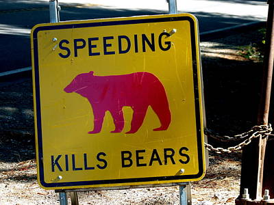 Yosemite Bear Sign Speeding Kills Bears Art Print