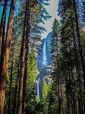 Art Print featuring the photograph Yosemite Falls by Dany Lison